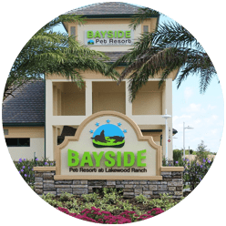 bayside pet resort lakewood ranch