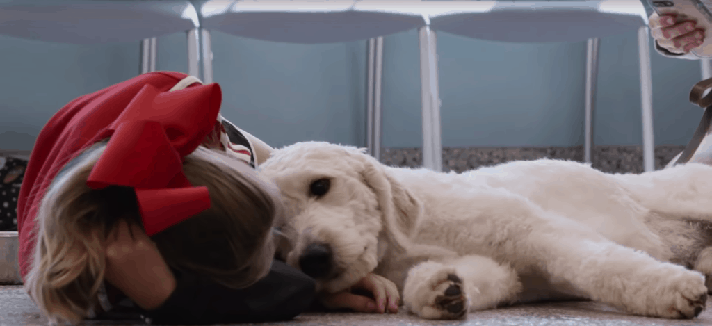 child laying with dog from netflix documentary dogs