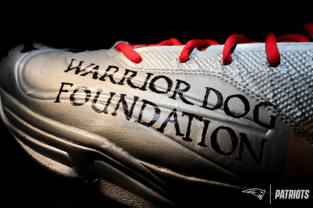 Warrior Dog Foundation Cleats 2018 New England Patriots David Andrews